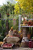 Arbeitsplatz im Bauerngarten herbstlich dekoriert