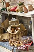 Arbeitsstil mit Blumenzwiebeln, Pflanzutensilien, Äpfeln