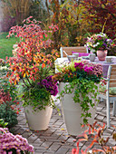 Herbstliche Terrasse mit Sitzgruppe und bepflanzten Kübeln