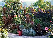 Rot - graues Beet mit Kübelpflanzen