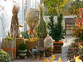 Terrasse mit winterfest verpackten Pflanzen im Kübel