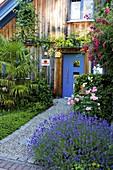 Moderner Vorgarten mit Holzhaus, Kiesweg und blauer Haustüre,