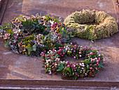 Herbstliche Kränze aus Pernettya (Torfmyrte), Hedera (Efeu)