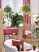 Ampeln im Zimmer als Raumteiler zwischen Wohn- und Eßzimmer