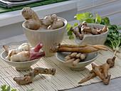 Asiatische Wurzeln aus der Familie Ingwergewächse als Gewürze für die Küche