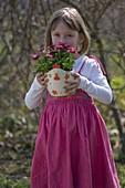 Kleines Mädchen mit Bellis (Tausendschön) im Übertopf