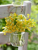 Primula veris (Echte Schlüsselblume, Himmelsschlüssel) in kleinem Glas