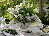 Weißer Duftstrauß aus Syringa (Flieder), Aquilegia (Akelei), Euphorbia