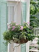 Kräuterampel mit essbaren Blüten