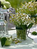 Apfel - Tischdeko in der sommerlichen Wiese