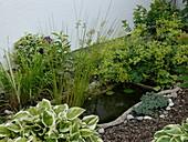 Kleiner Fertig - Teich mit Juncus (Binse), Nymphaea (Seerose), Iris
