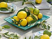 Zitronen - Tischdeko