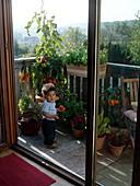 Kleiner Junge mit Tomate auf Balkon