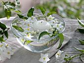 Glasschale mit Blüten und Schwimmkerze