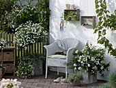 weiße Terrasse mit Korbsessel und Kübelpflanzen