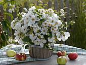 Weißer herbstlicher Strauß in Holzfäßchen auf Tisch