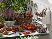 Arbeitstisch im Herbst mit Besenheide und Fruchtschmuck