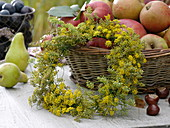 Kranz aus Fenchelblüten lehnt an Apfelkorb