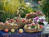 Körbe mit Äpfel auf Tisch
