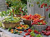 Verschiedene geerntete Paprika und Peperoni in Körben auf Tisch