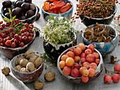Keramikschalen gefüllt mit Herbstfrüchten
