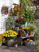 Herbst-Terrasse mit Blumentreppe