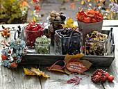 Tablett mit Gläsern voller Blüten, Blätter, Nüsse, Lampionfrüchte und Bohnen