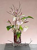 Moderner Strauß aus Anthurium (Flamingoblume) und Cornus (Hartriegel)