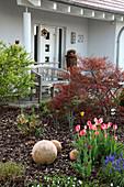 Vorgarten mit Holzbank, Stauden, Tulpen und Terrakottakugeln