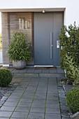Hauseingang mit moderner grauer Haustüre