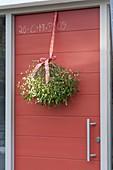 Hauseingang mit roter Haustüre