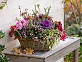 Korb herbstlich bepflanzt : Pernettya (Torfmyrten), Brassica (Zierkohl)