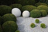Buxus sempervirens (Buchs), Taxus baccata (Eibe), Chamaecyparis (Scheinzypressen) zu Kugeln geschnitten, Granitkugeln, Kiesbeet