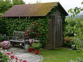 Kleine runde Terrasse mit Bank und Kübelpflanzen