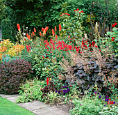 THE Red BORDER with KNIPHOFIA, PENSTEMON AND HEUCHERA at Garden WRITER Helen DILLON'S Garden IN Dublin