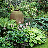 SHADE PLANTING: POLYGONUM BISTORTA 'SUPERBUM' AND HOSTA 'Gold STANDARD' SURROUND Urn by MONICA YOUNG USED As FOCAL POINT IN SHADY BORDER. TURN END, BUCKS