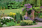 CLEMATIS 'Perle D'AZUR' COVERS Garden GATE IN BORDER with Phlox'White Admiral'&'Achillea 'Gold PLATE'.VALE END, Surrey