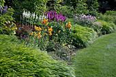Hakonechloa macra (Japangras), Lilium Tigrinum-Hybride 'Pearl Stacy' (Tiger - Lilie), Hosta 'White Triumphator'(Funkien), Astilbe chinensis (Astilben) und Anemone hupehensis 'Septembercharme' (Herbst-Anemone)