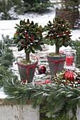 Gesteckte Bäumchen und Kranz aus Ilex aquifolium (Stechpalme), Picea