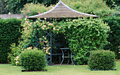 Pergola with Lonicera 'MUNSTER' IN THE LAWN. WOLLERTON Old HALL, SHROPSHIRE