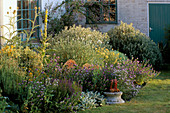MEDITERRANEAN BED with DROUGHT TOLERANT PLANTS:SEMPERVIVUMS STACHYS,ECHIUMS,CARDOONS,SENECIO. LITTLE Court,HANTS.