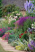 Rosa'LA Ville De BRUXELLES', Delphinium'Blue Jade', Salvia X SUPERBA, Dianthus'LACED MONARCH. THE Garden HOUSE, GLOS.