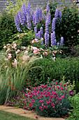 Delphinium'Blue Jade', Rosa'CELESTIAL', LILIUM REGALE, STIPA BARBATA & Dianthus'LACED MONARCH. THE Garden HOUSE,GLOS