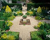 VEAN Garden: Symmetrical SQUARE BEDS SURROUND CENTRAL GRAVEL CROSS with LIGUSTRUM OVALIFOLIUM 'AUREUM',HOSTA CRISPULA, LIGULARIA 'THE Rocket',ALCHEMILLA. BOSVIGO HSE,Cornwall