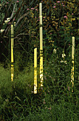 THIN GLASS TUBES of Light by BARBARA HUNT IN THE NATURAL AND ORIENTAL Water Garden, HAMPTON Court 97