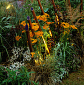 COPPER TUBES of Light by Garden & Security LIGHTING EMERGE BETWEEN Achillea AND Ornamental GRASSES IN THE NATURAL AND ORIENTAL Water GARDENS, HAMPTON Court 97