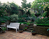 VIEW ONTO Town Garden with STEPS, A White SEAT AND ROSES 'BUFF BEAUTY' AND 'Penelope'. at THE BACK IS CATALPA BIGNONIOIDES. DESIGNED by HILARY MCPHERSON