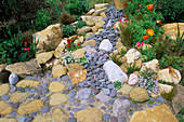 Orange POPPIES GROWING IN A Dry CREEK BED Made with ROCKS AND PEBBLES. Designer: KEEYLA MEADOWS, California
