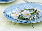 Kleiner Kranz aus Cytisus (Ginster) mit weißen Blüten von Crocus (Krokus)