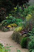 PATH THROUGH THE FOLIAGE Garden with CHOISYA TERNATA 'SUNDANCE', VARIOUS HEUCHERA, GRASSES, DWARF BAMBOO, PHORMIUM, Digitalis & ACANTHUS. THE ABBEY HOUSE, WILTSHIRE.